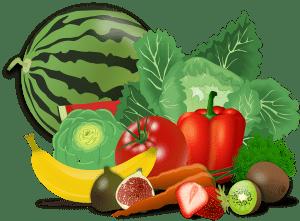 Lebensmittel Fachübersetzung