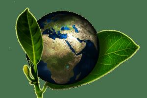 Umweltschutz Englisch Deutsch